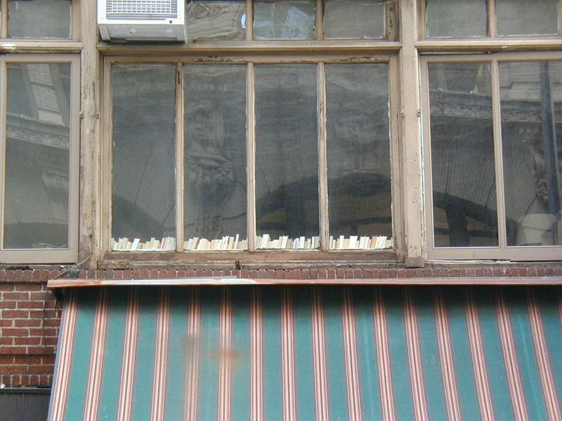 Row of books seen through a window - copyright Romy Ashby