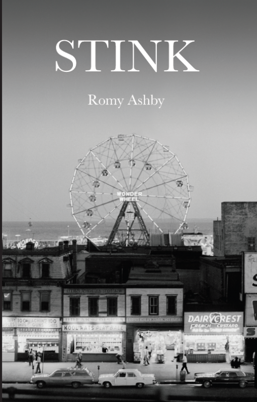 Cover of Stink - black and white photograph of the wonderwheel at dusk by Chris Stein